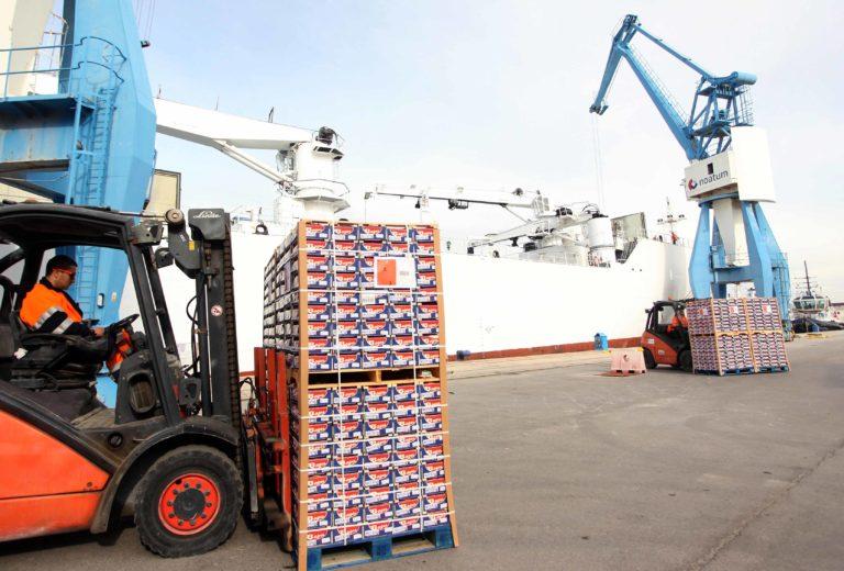 Las exportaciones de productos agroalimentarios crecen un 7,6 % en un contexto de descenso generalizado