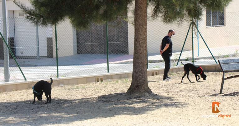 El Ayuntamiento habilita una nueva zona de esparcimiento canino en el Barrio Sagrado Corazón