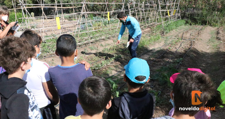 Medio Ambiente finaliza la campaña de educación escolar de este curso