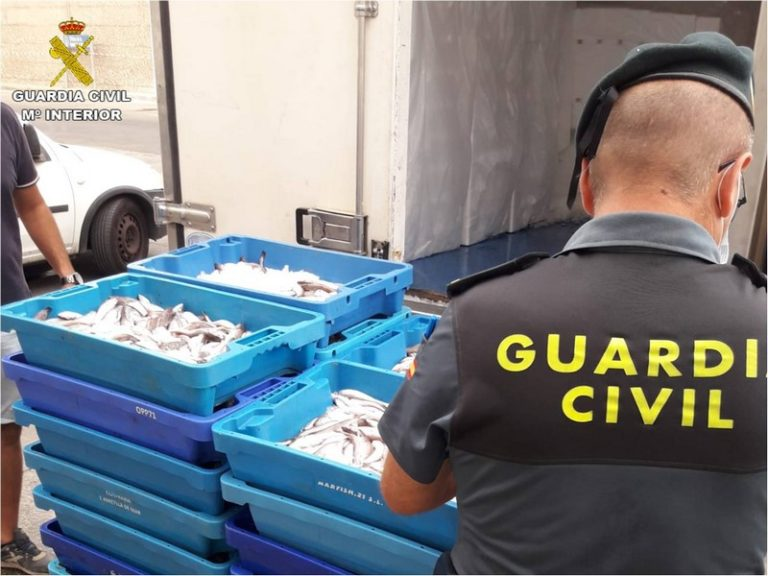 La Guardia Civil interviene media tonelada de pescado ilegal en puertos pesqueros del levante alicantino