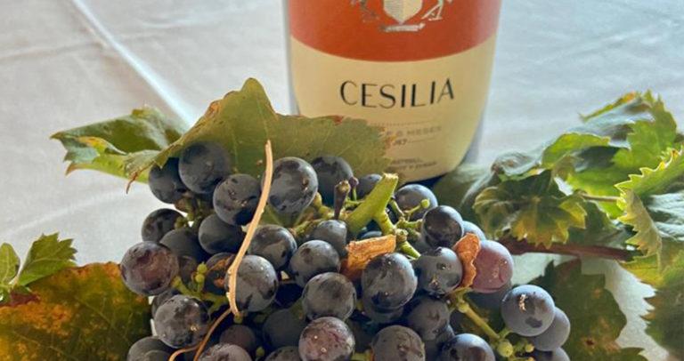 Casa Sicilia celebra la Fiesta de la Vendimia los domingos 5, 19 y 26 de septiembre