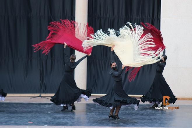 Clases para adultos en el Conservatorio Profesional de Danza de Novelda