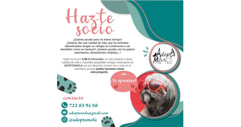 AdoptaMola presenta la nueva campaña Socios