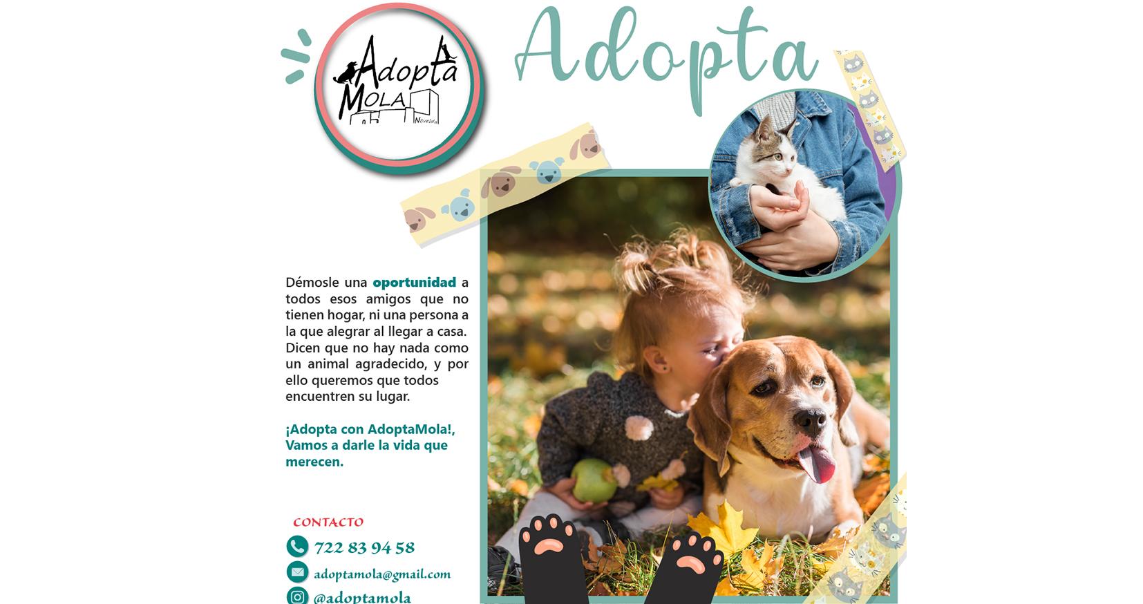 AdoptaMola presenta la campaña Adopta para darle a los animales la vida que merecen