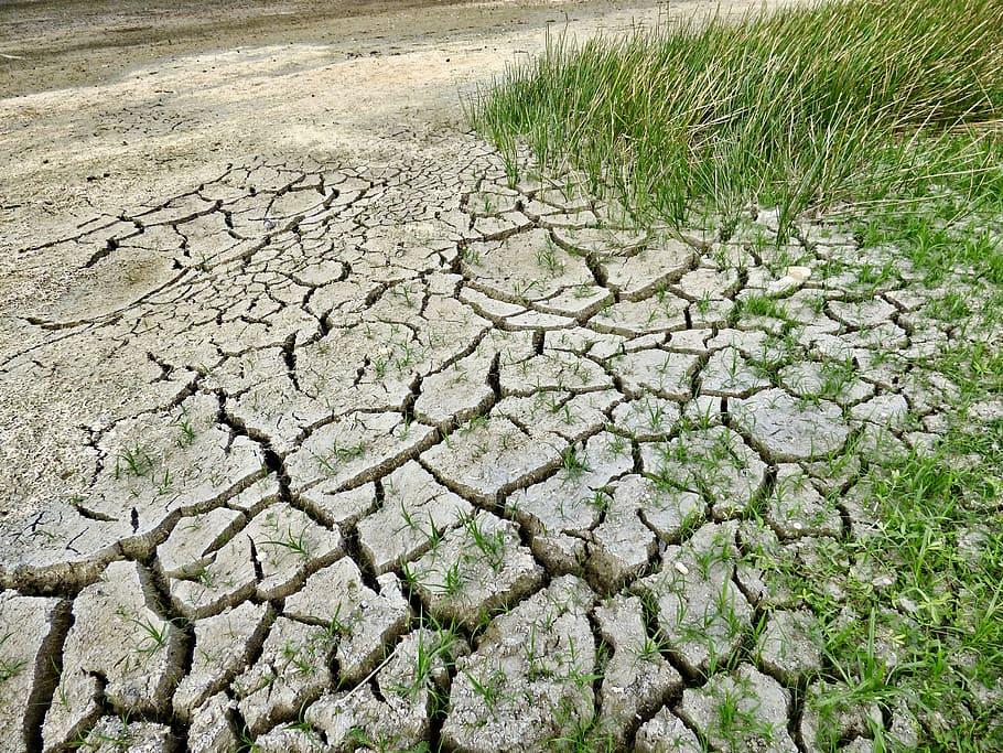 Emergencia Climática convoca por 2 millones de euros las ayudas a municipios de menos de 100.000 habitantes, como Novelda, para adaptarse al cambio climático